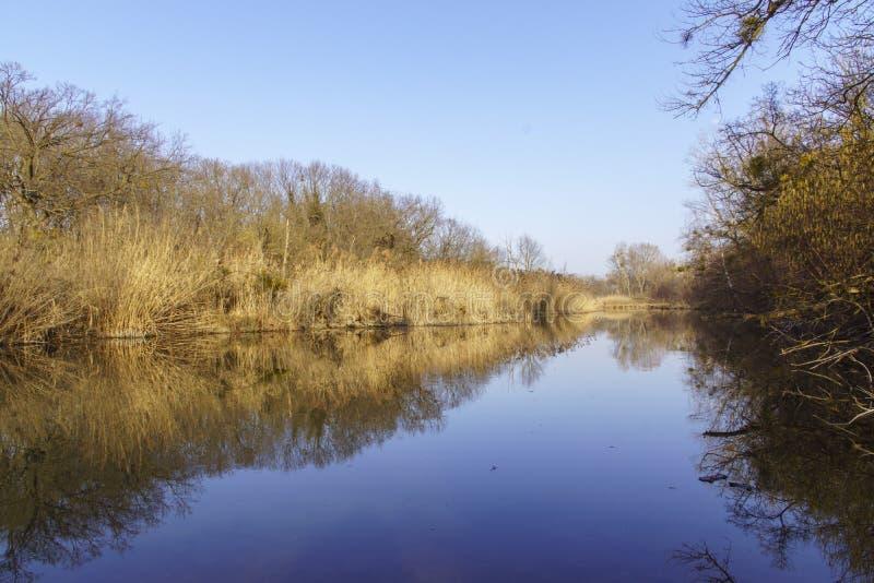 Natur fotografie od Szigetköz w Węgry obraz stock