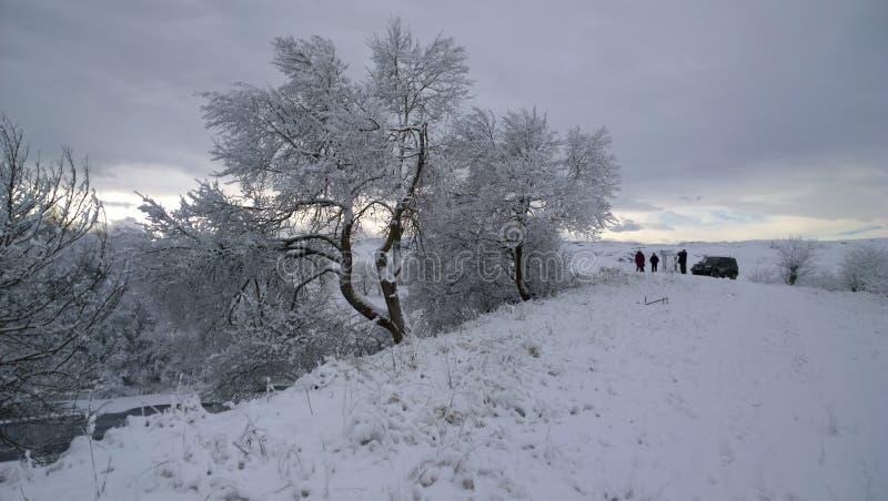 Natur gór zimy caucausus piękno wysoki zdjęcia stock