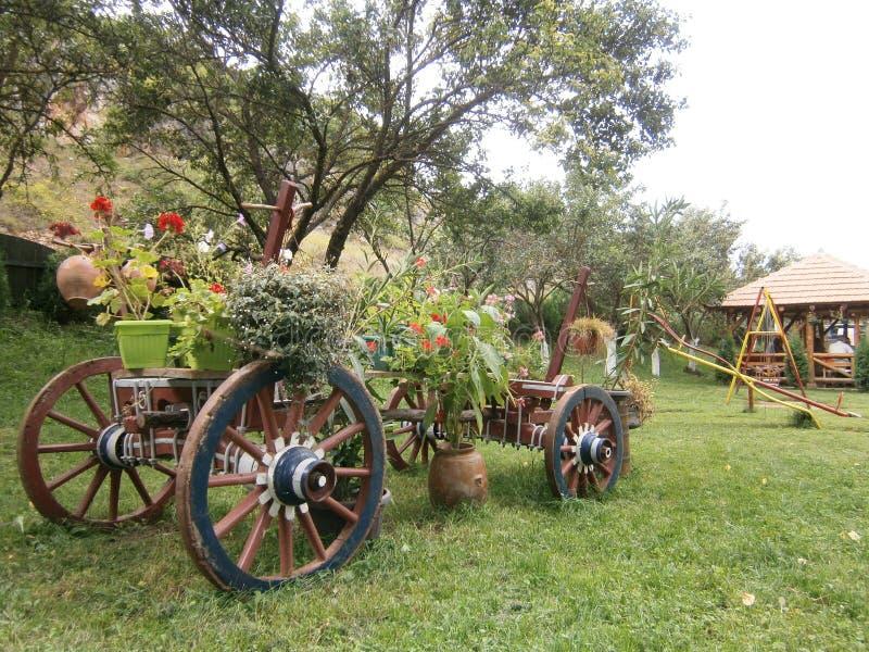 Natur - by i östliga Serbien royaltyfria foton