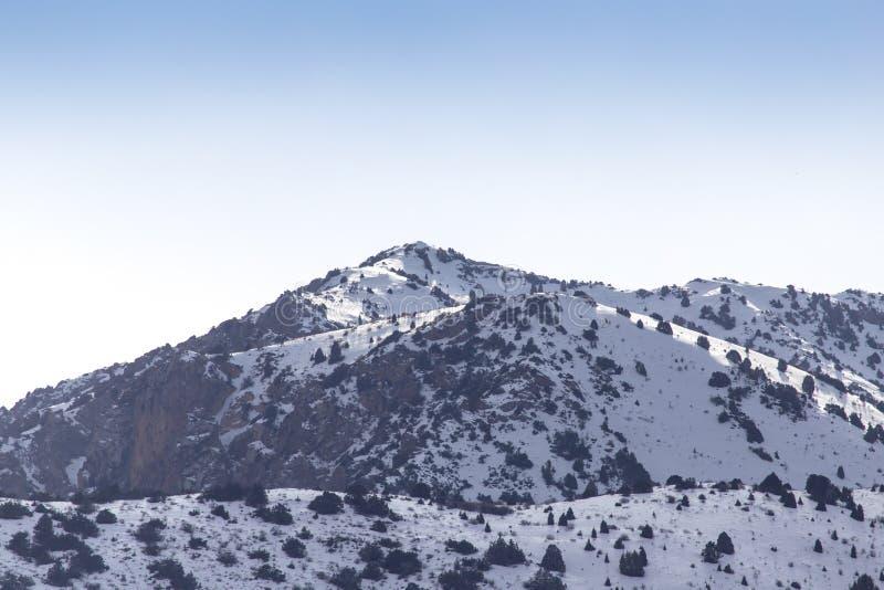 Natur i de Tien Shan bergen i vinter kazakhstan royaltyfria bilder