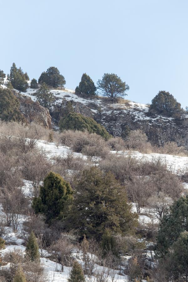 Natur i de Tien Shan bergen i vinter kazakhstan royaltyfri foto
