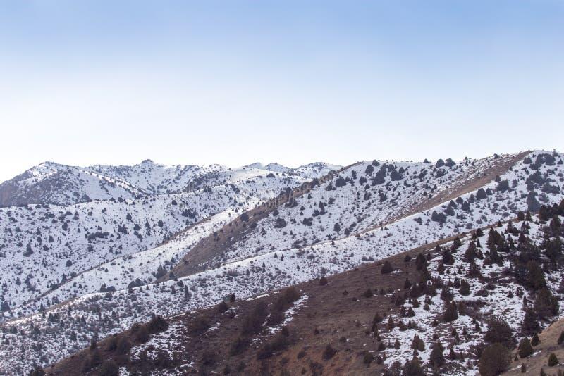 Natur i de Tien Shan bergen i vinter kazakhstan royaltyfri fotografi