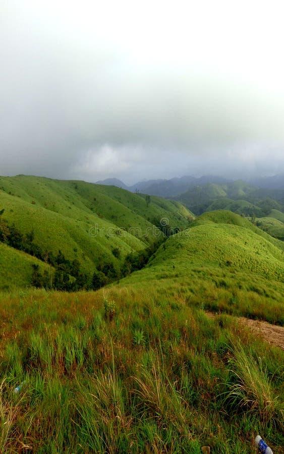 Natur-Kerala stockbilder