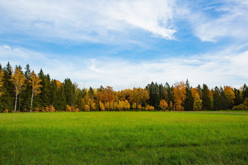 Natur-Landschaftsansicht des herrlichen Herbstes bunte Schöne Naturhintergründe Grüne gelbe Bäume und Rasenfläche auf blauem Himm lizenzfreie stockfotos