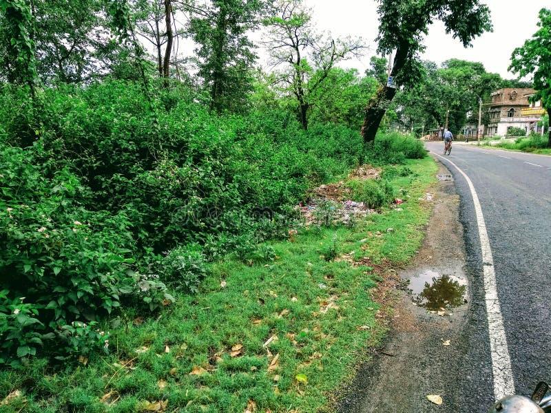 Natur med sabway royaltyfri foto