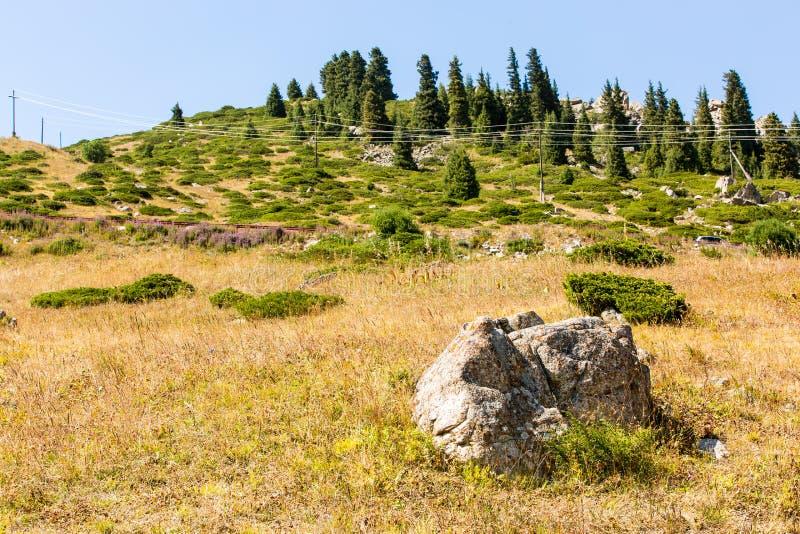 Natur nära den stora Almaty sjön, Tien Shan Mountains i Almaty, Kasakhstan fotografering för bildbyråer