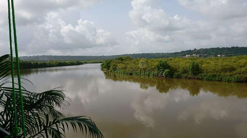 Natur nära Indien royaltyfria bilder