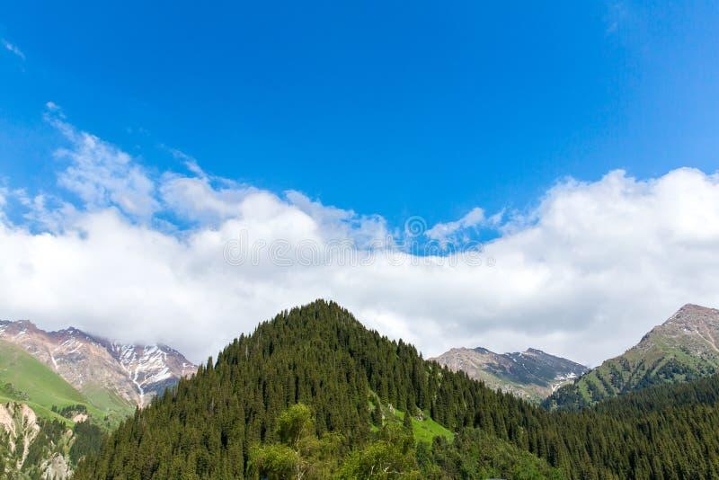 Natur nahe großem Almaty See, Tien Shan Mountains in Almaty, Kasachstan, Asien stockfotos