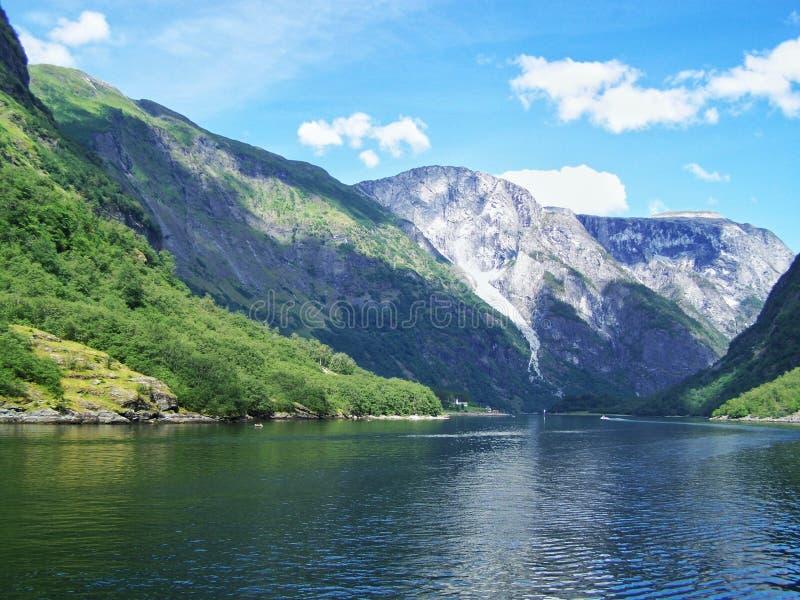 Natur-Norwegen-Sommer Wasser, Waldfjord an einem sonnigen Tag lizenzfreies stockbild
