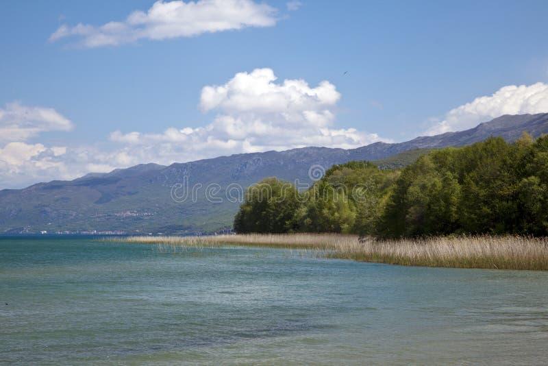 Natur på sjön Ohrid macedonia royaltyfria bilder