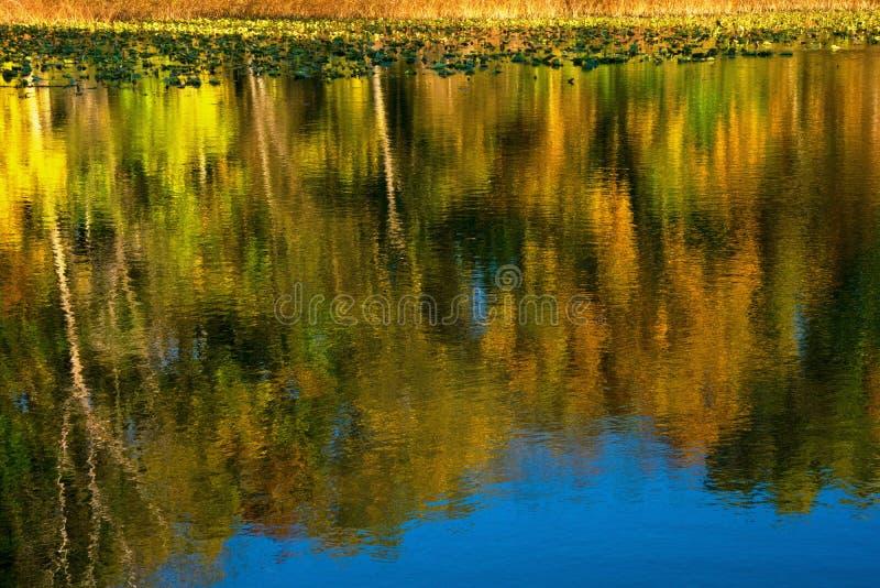 Natur-Palette stockbilder