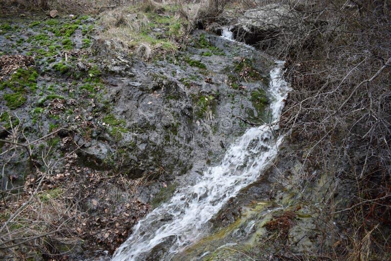 Natur-Park ` blaue Felsen ` - Bulgarien, Sliven stockfotografie
