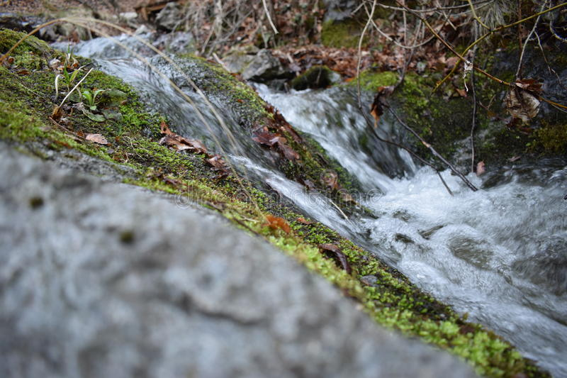 Natur-Park ` blaue Felsen ` - Bulgarien, Sliven stockbild