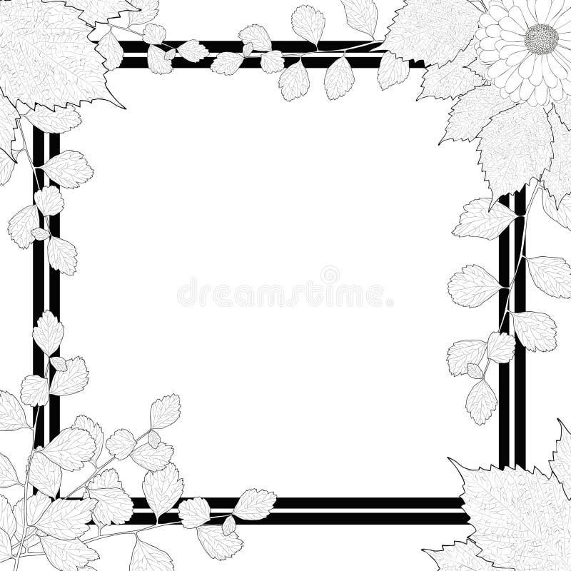 natur rahmen schwarzweiss niederlassungen bl tter blume vektor abbildung illustration von. Black Bedroom Furniture Sets. Home Design Ideas