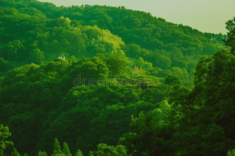 Natur Südkoreas lizenzfreies stockbild
