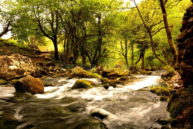 natur serbia arkivbilder