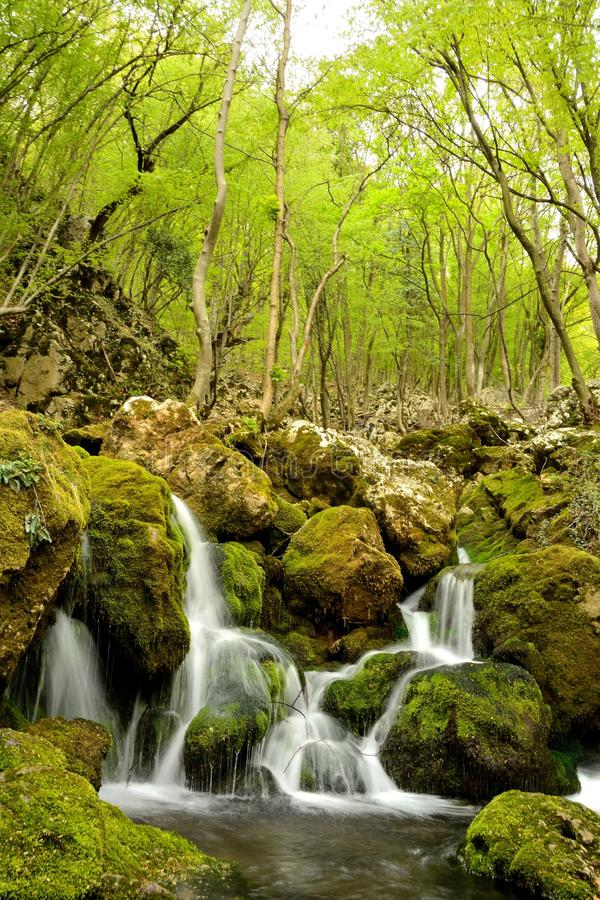 natur serbia royaltyfria foton