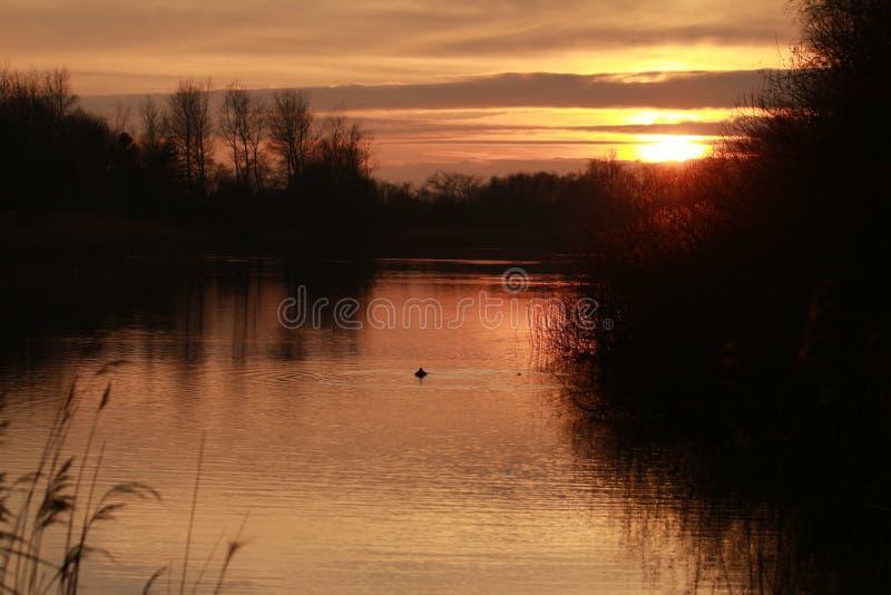Natur-Sonnenuntergang in den Niederlanden stockbilder