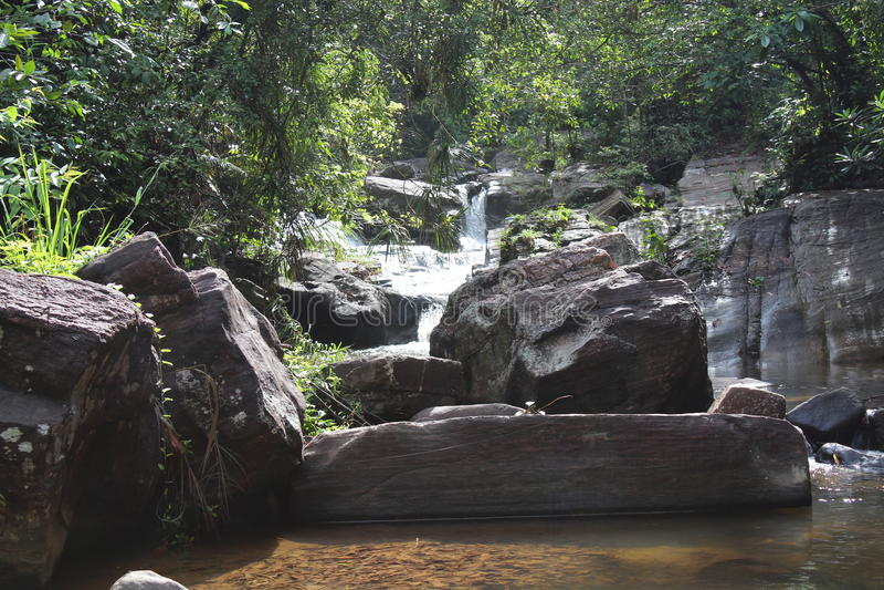 Natur in Sri Lanka lizenzfreie stockfotografie