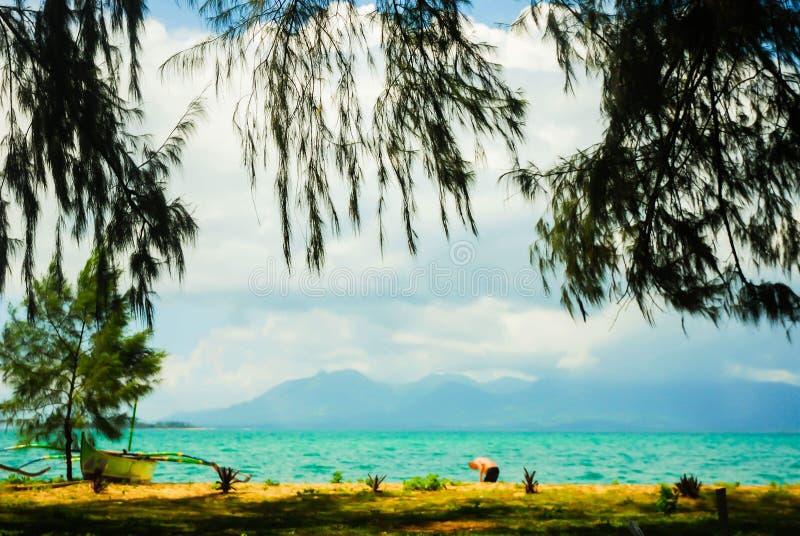Natur und Strand lizenzfreie stockfotografie