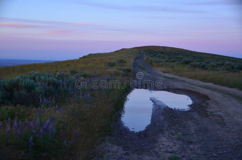 Natur verlässt eine Liebes-Anmerkung: Herz der Pferdehimmels-Hügel, stockbilder