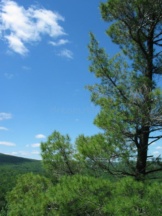 Natura immagine stock