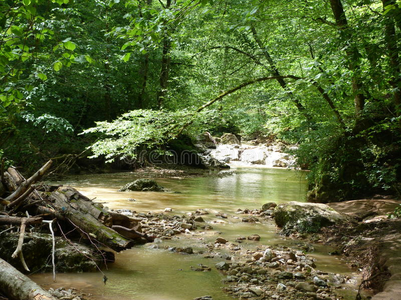 Natura Adygea zdjęcie royalty free