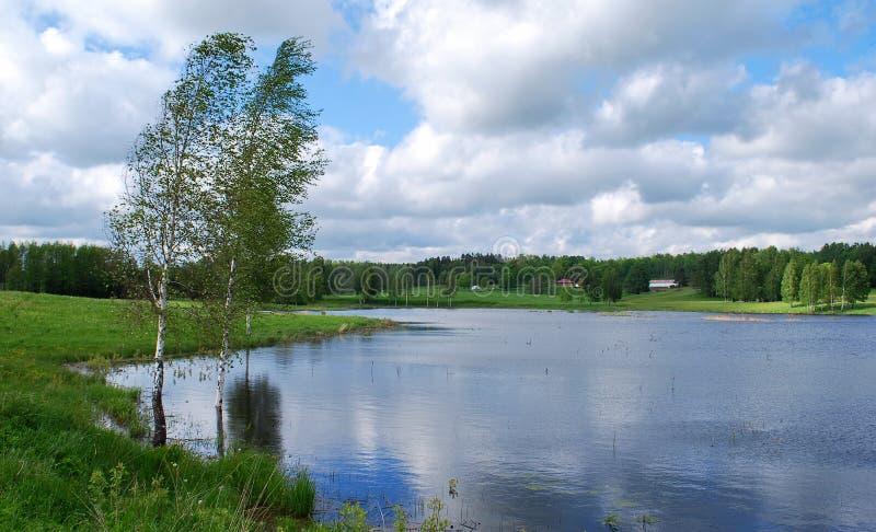 Natura al distretto di Kuldiga. immagine stock