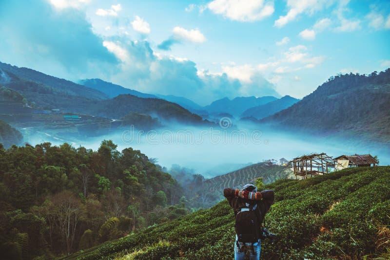 Natura asiatica di viaggio dell'uomo Il viaggio si rilassa Parco naturale sul Moutain thailand fotografia stock