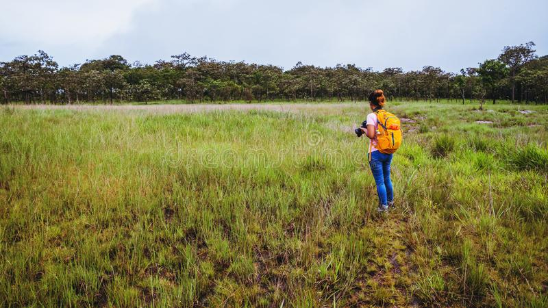 Natura asiatica di viaggio della donna Il viaggio si rilassa Cammini lo studio la natura del percorso nella foresta immagine stock libera da diritti