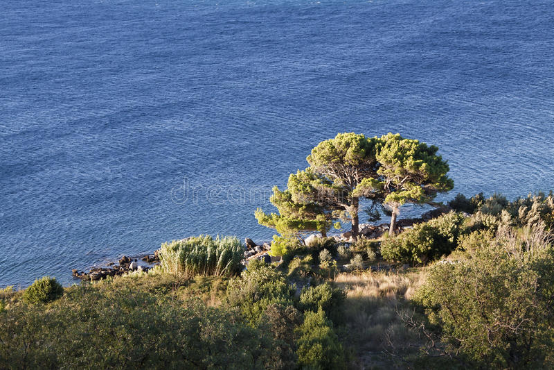Natura blu e verde immagini stock libere da diritti