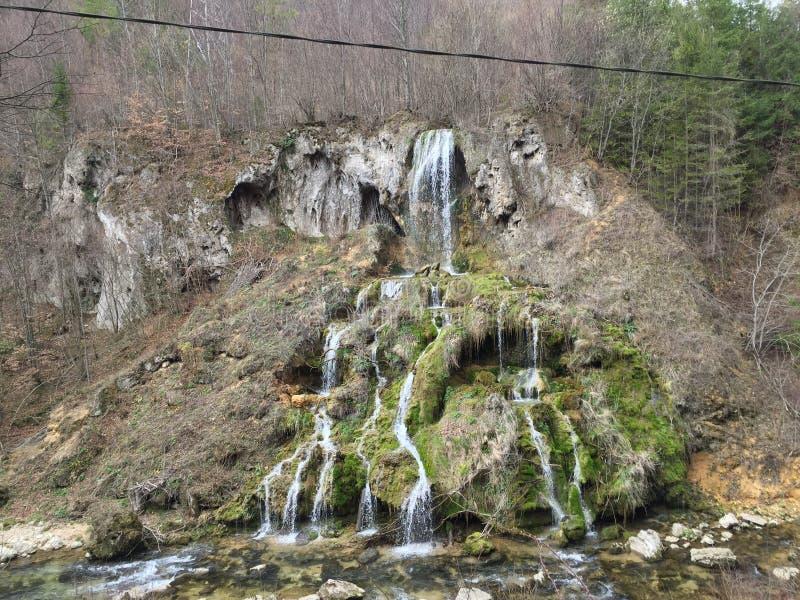 Natura stock photography