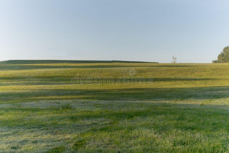 Natura con l'erba leggera e verde magica dei raggi di sole, del sole, parte 14 del prato immagini stock libere da diritti