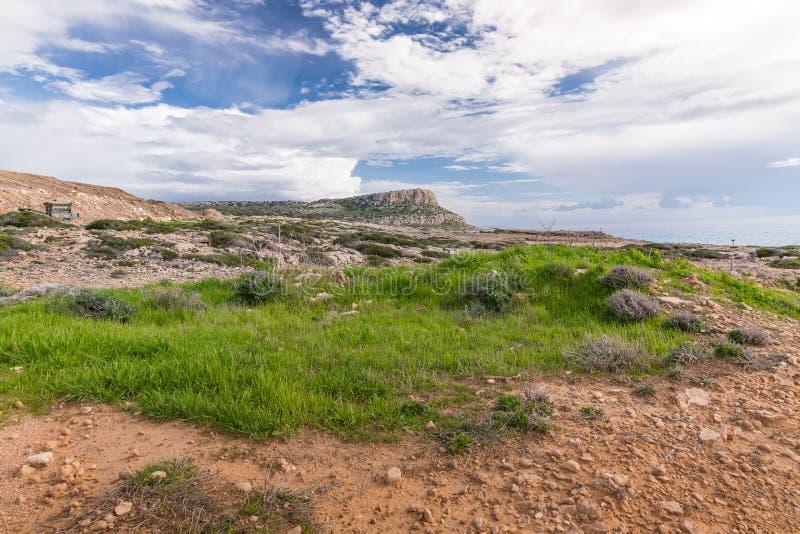 Download Natura Cypr obraz stock. Obraz złożonej z europejczycy - 53782113
