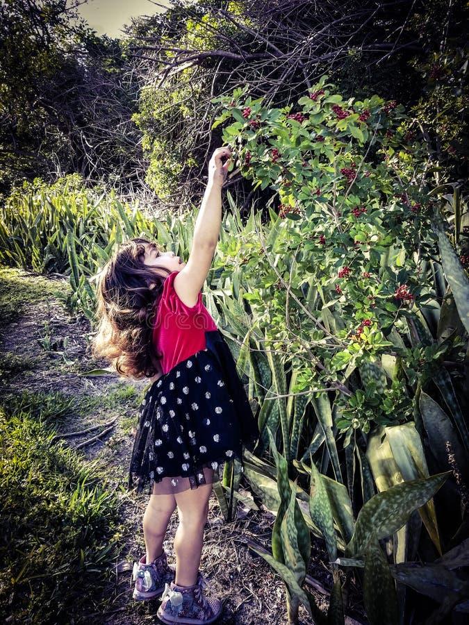 Natura del bambino fotografia stock libera da diritti
