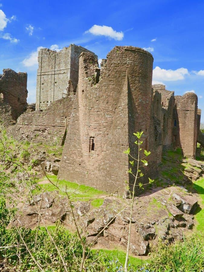 Natura del castello immagini stock libere da diritti