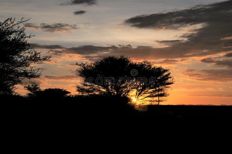 Natura del Sudafrica dal tramonto fotografie stock