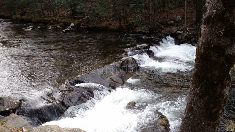 Natura del Tennessee fotografie stock