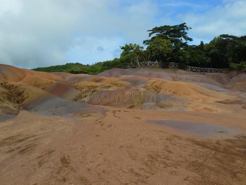 Natura dell'albero di estate delle Mauritius della terra di sette colori fotografia stock libera da diritti