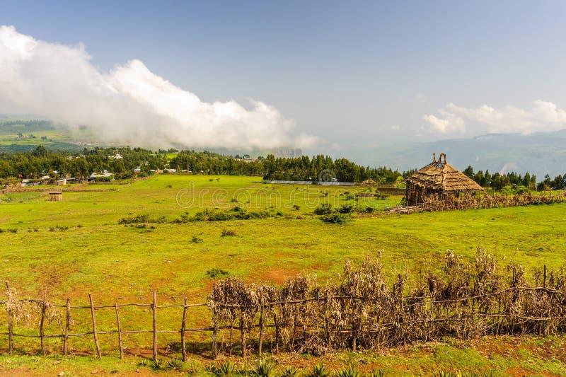 Natura dell'Etiopia fotografie stock