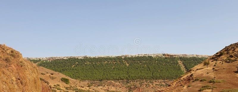 Natura della montagna immagine stock libera da diritti
