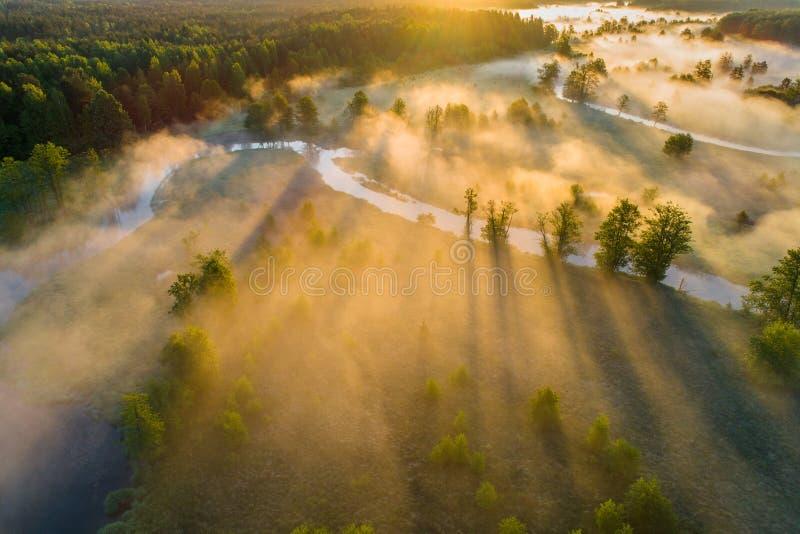 Natura della sorgente Alba della primavera Paesaggio aereo della molla fotografia stock libera da diritti