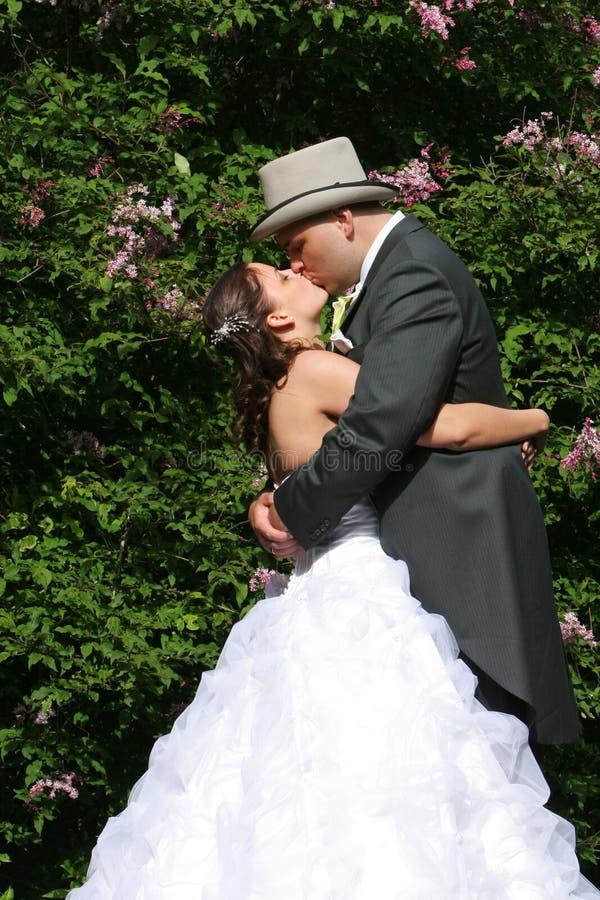 Natura di baciare fotografie stock