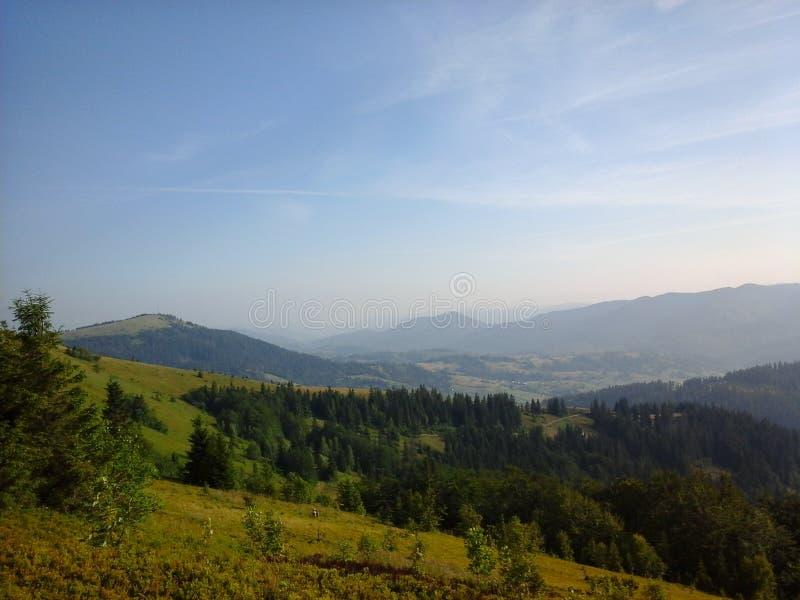 Natura di Carpathians fotografie stock