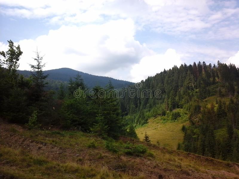 Natura di Carpathians fotografie stock libere da diritti