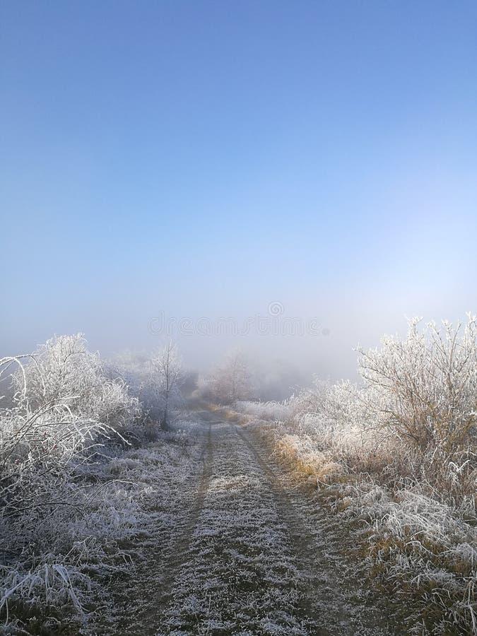 Natura di inverno in repubblica Ceca fotografie stock libere da diritti