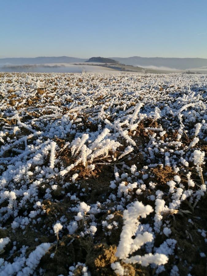 Natura di inverno in repubblica Ceca immagine stock