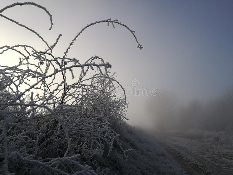 Natura di inverno in repubblica Ceca fotografie stock