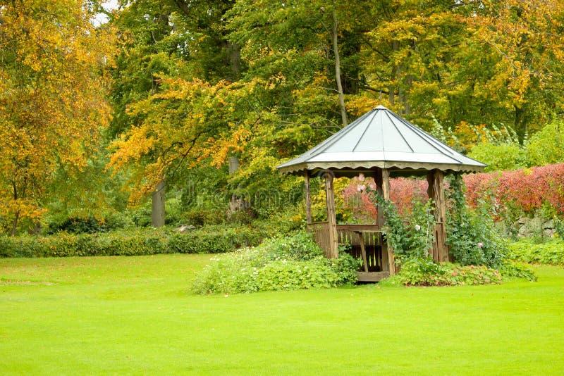 Natura dorata di autunno immagine stock libera da diritti