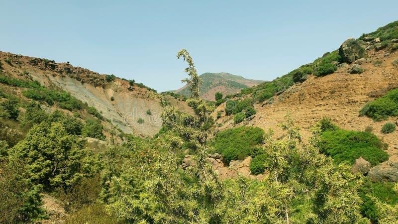 Natura góra zdjęcie royalty free